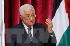 Palestine chính thức gia nhập Tòa Án Hình sự Quốc tế ICC