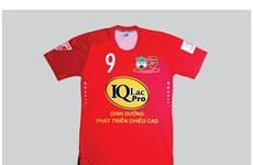 Hoàng Anh Gia Lai có nhà tài trợ mới ở V-League 2017