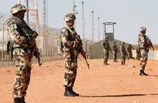 Algeria tạm đóng cửa biên giới phía Nam vì lý do an ninh