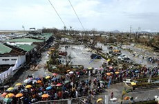 Không có công dân Việt tại Philippines chết vì bão