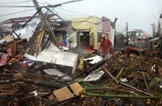 Tình hình cứu trợ người Việt tại Philippines sau siêu bão