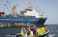 Guinea-Bissau điều tra vụ Senegal bắt giữ tàu cá Nga