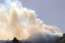 Đã dập tắt đám cháy tại Vườn Quốc gia Hoàng Liên