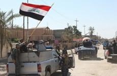 Ủy ban bầu cử Iraq đồng loạt đệ đơn xin từ chức