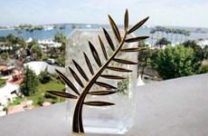 Liên hoan phim Cannes lần thứ 67 sẵn sàng khai mạc
