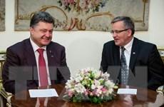 Tổng thống đắc cử Ukraine xem xét chia sẻ quyền lực