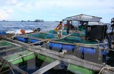 Khai thác hiệu quả lợi thế biển cho nuôi trồng thủy sản
