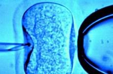 Tòa án Italy bỏ lệnh cấm dùng tinh trùng và trứng hiến tặng