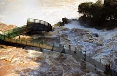 Lũ lụt nghiêm trọng tại Brazil, 50.000 dân phải sơ tán khẩn cấp