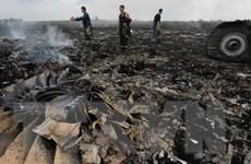 Việt Nam gửi lời chia buồn tới thân nhân các nạn nhân vụ rơi máy bay