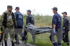 Ukraine: Tìm được 251 thi thể trong vụ rơi máy bay MH17