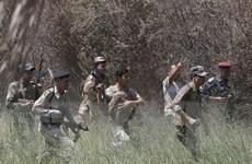 Đức không cung cấp vũ khí, Italy không can thiệp quân sự vào Iraq
