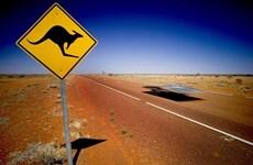 Australia đối mặt với tình trạng thừa điện chưa từng có tiền lệ