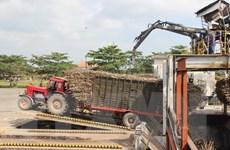 Ứng dụng cơ giới hóa để nâng cao hiệu quả sản xuất mía đường