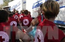 Ukraine xác nhận hàng vận chuyển của Nga là viện trợ nhân đạo