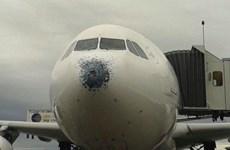 Hành khách hú vía vì máy bay gặp mưa đá trước khi hạ cánh