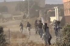 Các nhánh al-Qaeda hối thúc lập mặt trận thánh chiến thống nhất