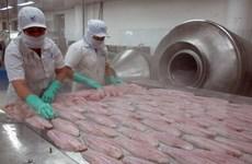 Nhờ cá tra, Việt Nam đứng đầu về xuất khẩu cá phile sang Brazil