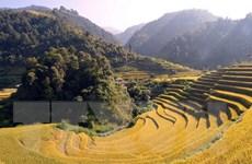 Tỉnh Sơn La quy hoạch các khu bảo tồn đa dạng sinh học