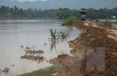 Phú Thọ: Sạt lở bờ sông Thao diễn ra ngày một nghiêm trọng