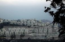 Palestine, Jordan đề nghị họp khẩn về việc Israel mở rộng nhà định cư