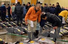 Nhật Bản dự kiến nâng mức phạt đối với đánh bắt trộm hải sản