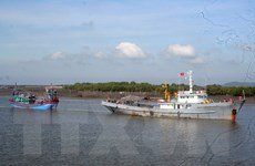 Cứu hộ thành công 11 thuyền viên bị mắc cạn gần đảo Lý Sơn
