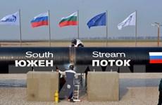 """Ai hưởng lợi khi Nga dừng dự án """"Dòng chảy phương Nam"""""""