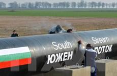 Bulgaria thiệt hại nặng do lệnh trừng phạt của EU đối với Nga