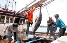Xây dựng 5 trung tâm nghề cá lớn gắn với ngư trường trọng điểm