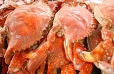 Hà Tĩnh: 3 ngư dân tử vong trên biển sau khi ăn ốc, ghẹ luộc