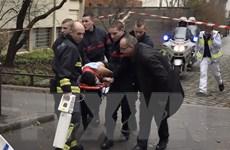 Họa sỹ biếm họa Australia nói về nạn nhân vụ tấn công tại Pháp
