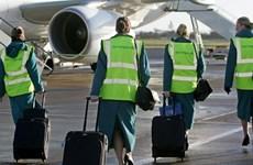 Aer Lingus chấp nhận mức bỏ thầu 1,35 tỷ euro của IAG