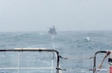 Đà Nẵng: Khẩn trương cứu thuyền viên tàu ĐNa 90350TS gặp nạn