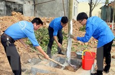 Phát động Tết trồng cây tại khu mộ Đại tướng Võ Nguyên Giáp