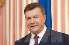 Ukraine hiện đại hóa quân đội bằng tài sản của ông Yanukovich