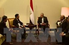 Ai Cập mong muốn thúc đẩy quan hệ với Việt Nam trên nhiều lĩnh vực