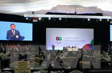 Hội nghị Á-Phi cam kết củng cố quan hệ chiến lược hai châu lục