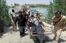Thủ tướng Iraq hối thúc Nga hợp tác chống lực lượng IS