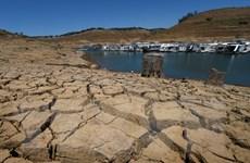 Biến đổi khí hậu đang là mối nguy lớn nhất đối với Trái Đất