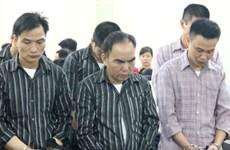 Phạt tù 6 đối tượng hai lần cưa trộm cây sưa ở Hà Nội
