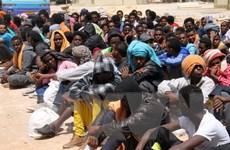 Triệt phá đường dây đưa người nhập cư trái phép vào Mỹ