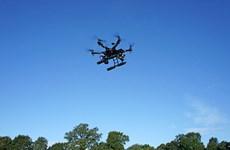 Ông bố bị bắt vì bắn flycam quay trộm con gái đang tắm nắng