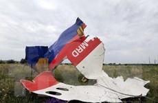 """""""Còn quá sớm để khẳng định MH17 bị bắn rơi bởi tên lửa BUK"""""""