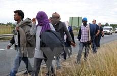 Anh và Pháp thành lập trung tâm chống di cư bất hợp pháp