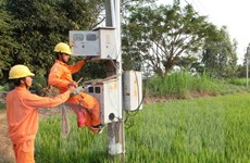 Thực hiện lộ trình thị trường điện phụ thuộc ở tái cấu trúc ngành