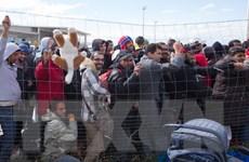 Ấn Độ giúp Jordan đối phó với cuộc khủng hoảng về người tị nạn