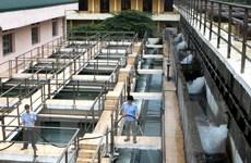 Hà Nội xin cơ chế triển khai tuyến ống dẫn khẩn cấp nước sạch