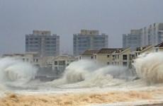 """Cơn bão Joaquin """"cực kỳ nguy hiểm"""" tràn vào miền trung Bahamas"""