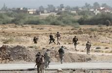 Quân đội Iraq đánh bật phiến quân IS khỏi thị trấn dầu mỏ Baiji